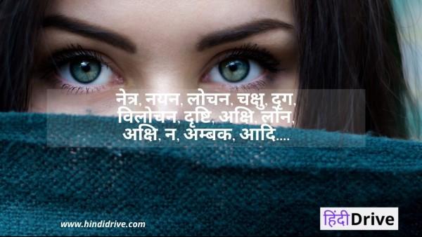 आँख का पर्यायवाची शब्द – Aankh Ka Paryayvachi Shabd In Hindi