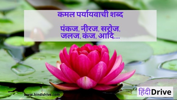कमल का पर्यायवाची शब्द – Kamal Ka Paryayvachi Shabd