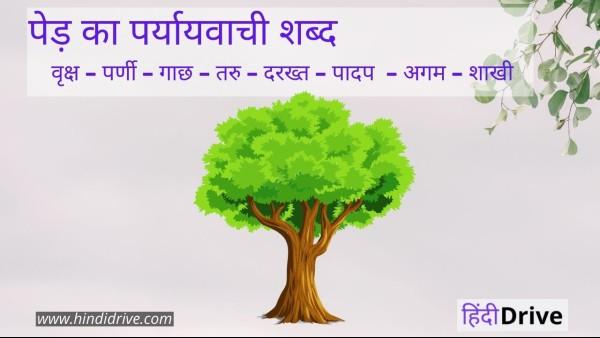 पेड़ का पर्यायवाची शब्द क्या होता है ? – Ped Ka Paryayvachi Shabd In Hindi