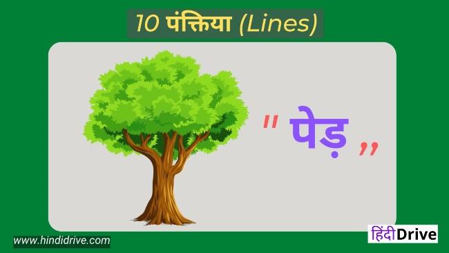 पेड़ों पर पंक्तियां  10 Lines on Trees In Hindi   Short Essay on Tree in Hindi