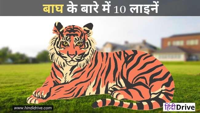 बाघ के बारे में 10 लाइनें  10 Lines On Tiger In Hindi