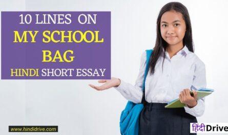 10 Lines on My School Bag in Hindi