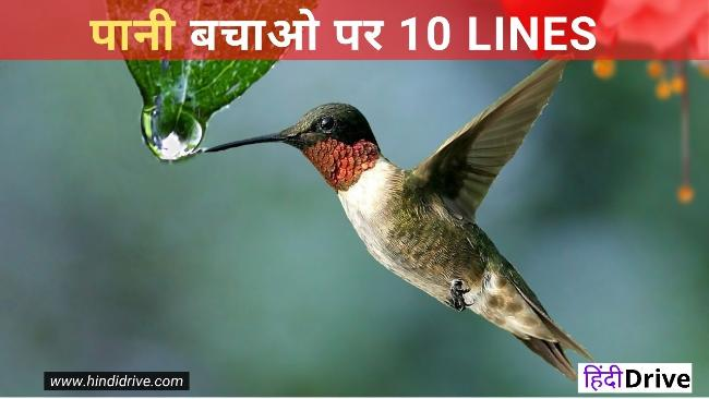 पानी के महत्व पर 10 लाइन   10 Lines On Save Water in Hindi