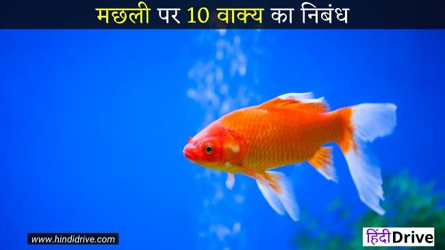 मछली पर 10 वाक्य का निबंध- 10 Lines on Fish in Hindi