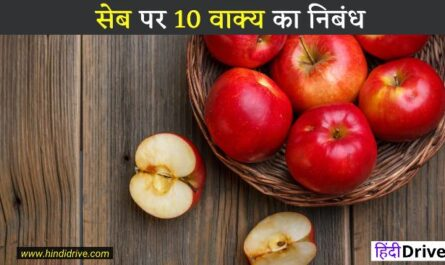 Information About Apple In Hindi
